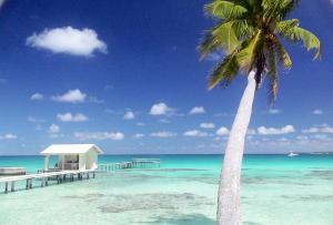 Tahiti-Pearl-farm-island